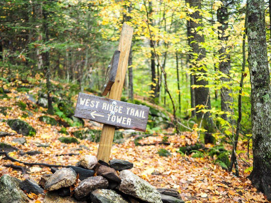 Cardigan Mountain Trail
