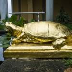 Saint Gaudens; A National Historic Site