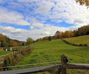 Living in Vershire, Vermont