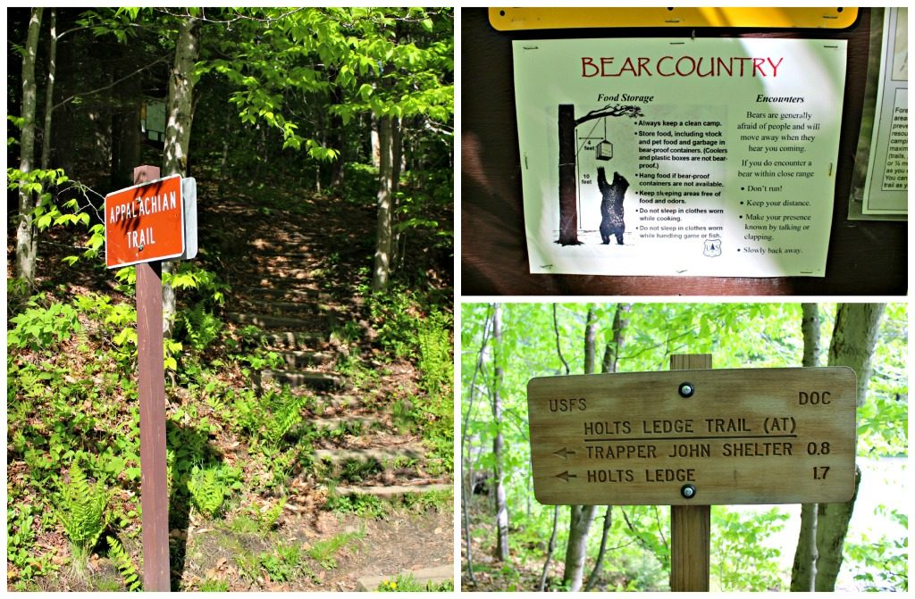 Holt's Ledge, Bear Country and Trapper Johhn Sign