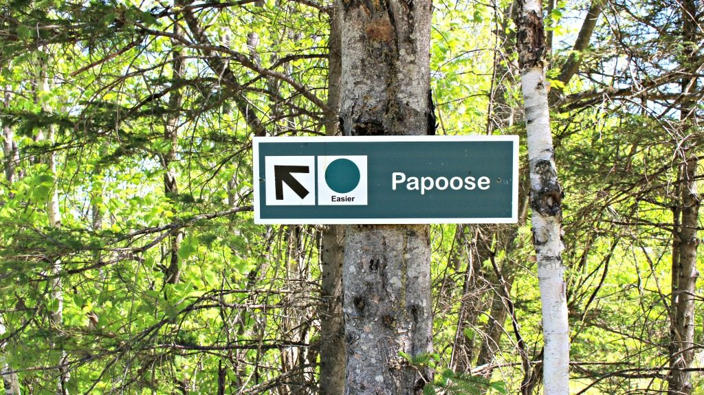 Hike From Holt's Ledge, Papoose