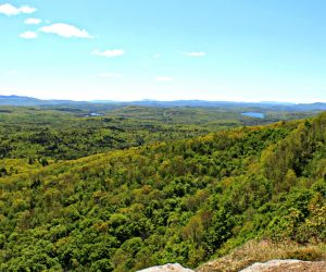 View from Holt's Ledge in Lyme, New Hampshire