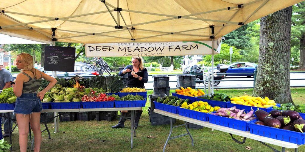 Organic Farm Stand at Woodstock, VT Farmer's Market